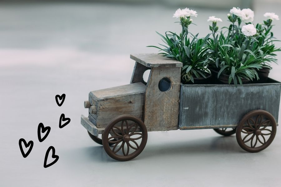 dostava-cvetja-na-dom